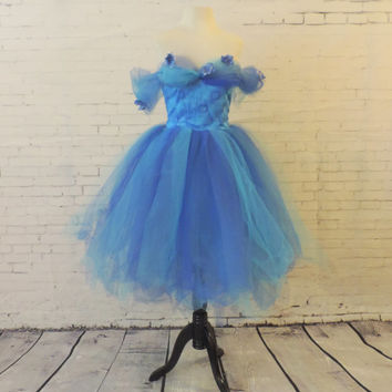 Cinderella inspired tutu dress, princess costume, adult tutu dress, blue tulle dress, tea length tutu dress, tutu dress women adult costume