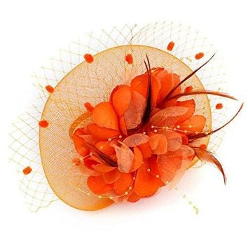 Net Mesh Flower Veil Feather Fascinator Hat Hair Clip Wedding Church Party Headpiece