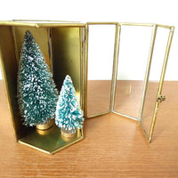 Hexagonal brass, glass and mirror display case, 5 x 3.75 inches