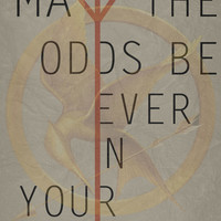 The Hunger Games Poster 02 Art Print by Misery