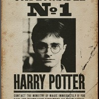 Harry Potter - Undesirable No 1 Prints at AllPosters.com