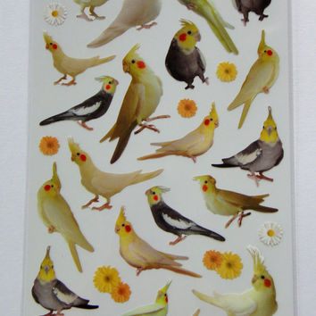 Cute Real Cockatiel / Cockatoo / Birds & Flowers Photo Stickers From Japan