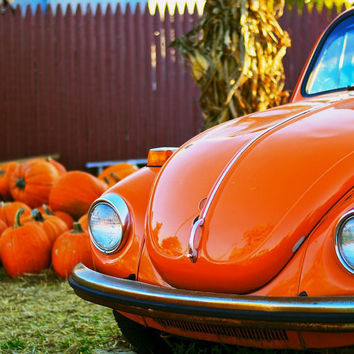 Pumpkin Patch Surprise Orange Volkswagen Beetle by povphotoart