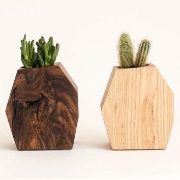 Large Walnut Wood & Large Ash Wood Modern Succulent Planters // Set of 2 // Asymmetrical Contemporary Design for the Modern Home