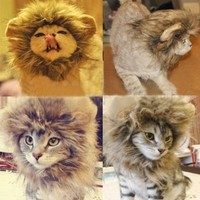 Generic Pet Costume Lion Mane Wig for Cat Christmas Xmas Santa Halloween Clothes Festival Fancy Dress up (Blending, M)