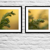 Nature photography collection of 2 square wall decor prints yellow green photo prints woodland home decor botanical fine art photography