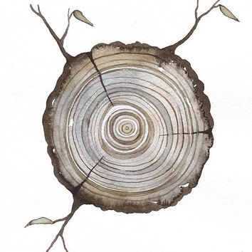 Print Fine Art Illustration - Log tree rings - (5 x 7) Original Watercolor Painting by Lorisworld - Limited edition