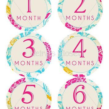 Baby Monthly Stickers Vintage Floral Baby Girl Monthly Stickers