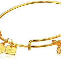 Alex and Ani Charity By Design Hermit Crab Expandable Yellow Gold Bangle Bracelet