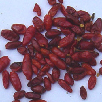 Pequin Chile Seeds + FREE Bonus 6 Variety Seed Pack - a $30 Value!