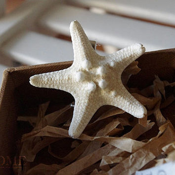 starfish hairpin jewelry for her him beautiful surprise gift 33