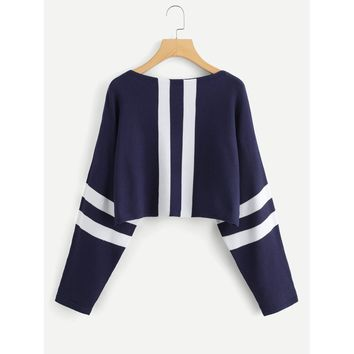 Navy and White Crop Sweater