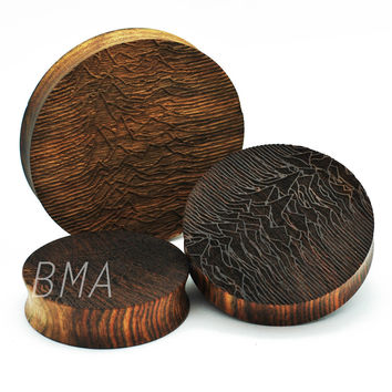 "Pulsar on Chechen Wood XL Plugs  (2""-3"") (51mm-73.5mm)"
