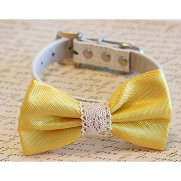 Yellow Wedding dog Collar Bow tie, Dog lovers, Country wedding, Beach wedding