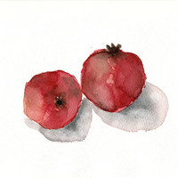 Pomegranates No. 4 reproduction print of original watercolor painting  Deep  red and salmon hues limited edition