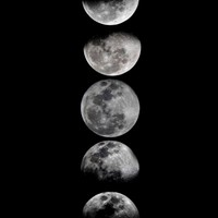 Phases of the Moon Art Print by Eftypography | Society6
