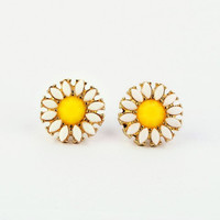 Bright Daisy Earrings