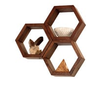 Wood Shelves -  Wall Shelving - Geometric Hexagon Shelves - Honeycomb Shelves - Modern Eco Friendly Home Decor - Set of 3 Small Shelves