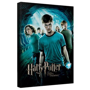 Harry Potter - Order Of The Phoenix Canvas Wall Art With Back Board