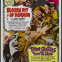 Bloody Pit of Horror 11x17 Movie Poster (1967)