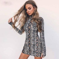 Snake Skin Long & Short Sleeve Dress Autumn Women Sexy Bodycon Snakeskin High Neck Party Mini Dresses designer clothes