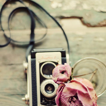 Camera and flower photograph, dried peony, cottage chic, pink,  rustic, romantic, teal, vintage, french country decor, fine art photo, 5x7
