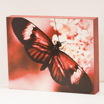 Mauve Butterfly Wall Panel - 8x10 Photo Standout, Fine Art Photography, Ready to Hang Wall Decor, Nature, Red Cream Home Accent