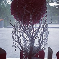 "BalsaCircle 30"" Manzanita Tree with Garlands for Wedding Centerpieces - Black"