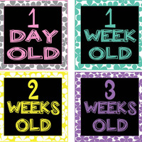Baby Girl Monthly Birth Milestone Stickers & Iron-ons Newborn - 1 Year - 17 Stickers Total!  Bright Rainbow Colors on Black - Squares Modern