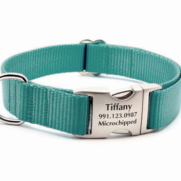 Teal Webbing Dog Collar with Laser Engraved Personalized Buckle