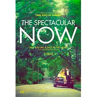The Spectacular Now 11x17 Movie Poster (2013)
