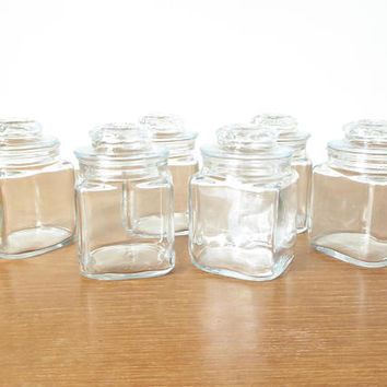 Six small square glass jars for spices, apothecary or storage