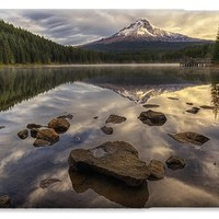 Trillium Reflection iPhone 6 Case for Sale by Mark Kiver