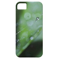 Case: Moment in the Forest iPhone 5 Covers