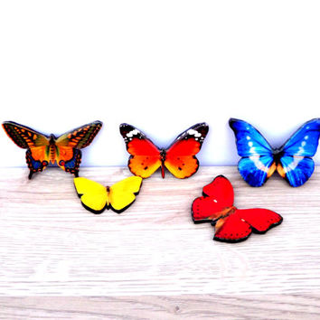 Home decor, Table decor, Butterfly decor, Red butterfly, Blue butterfly, Orange butterfly, Not real butterfly, Butterfly decoration,
