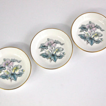 Royal Worcester Plate Set / Pin Dish / English Bone China / Botanical Design