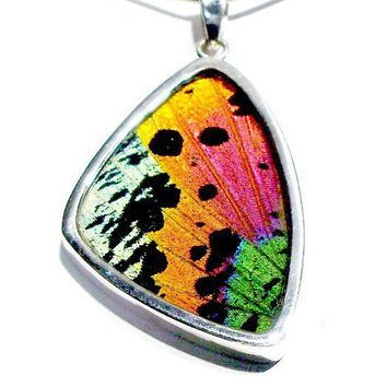 Real Butterfly Wing Jewelry Sterling Silver by bflydesigns777