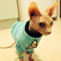 Star trek cat tunic