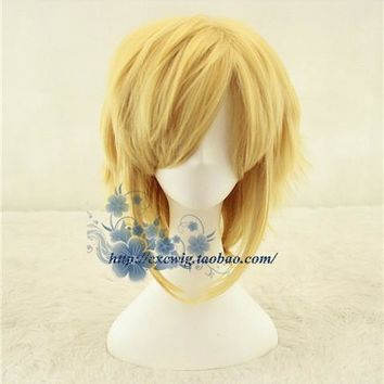 Link Cosplay Wig The Legend of Zelda Cosplay Wig Hair Role Play Golden Color Halloween Role Play Hair