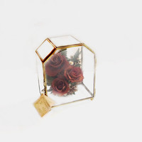 Preserved Dried Roses / Flowers, Glass Brass Display Case / Terrarium