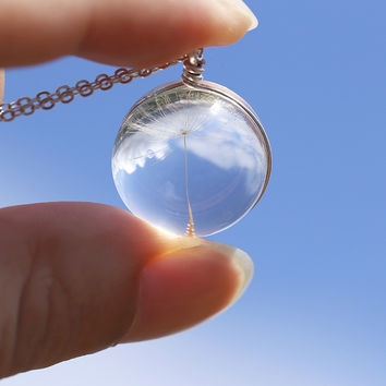 Fashion Dandelion Seed in Glass Long Necklace Best Friends Necklaces for 2 Dried flowers Pendant Necklace Silver Chain
