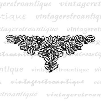 Acorn Design Element Printable Image Digital Embellishment Symbol Download Graphic Vintage Clip Art Jpg Png Eps  HQ 300dpi No.4086