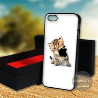 Kitten Eating Apple case for Note 2,3/iPod 4th 5th/iPhone 5,5s,5c,4,4s,6,6+[ JYJ ] LG Nexus/HTC One/Samsung Galaxy S3,S4,S5