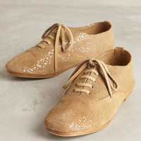 Donchoo Catharina Oxfords by Anthropologie Neutral Motif