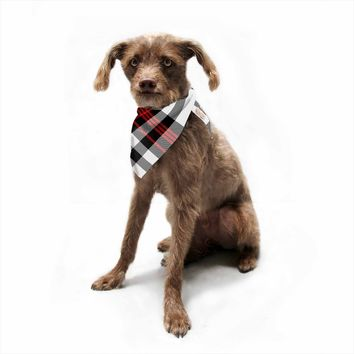 "Kess Original ""Red And White Plaid II"" Red White Pattern Digital Pet Bandana"