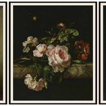 "Set of 3 Floral Botanical Fine Art Print Roses Reproductions by Gerard van Spaendonck, Unframed 8 x 10"" or 11 x 14 Wall Decor"