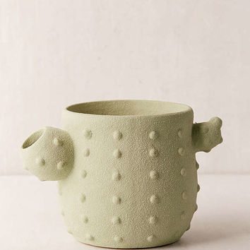 Cactus Planter   Urban Outfitters