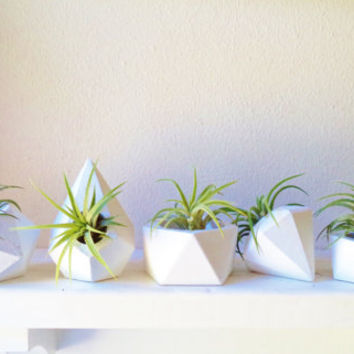 Geometric mini planter collection, set of air plant holders, book shelf planter, desk planter