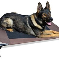 K9 Cot | Dog Cot | Pet Cot | Dog Bed Cot | Ray Allen Manufacturing