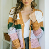 Shelby Colorblock Cardigan